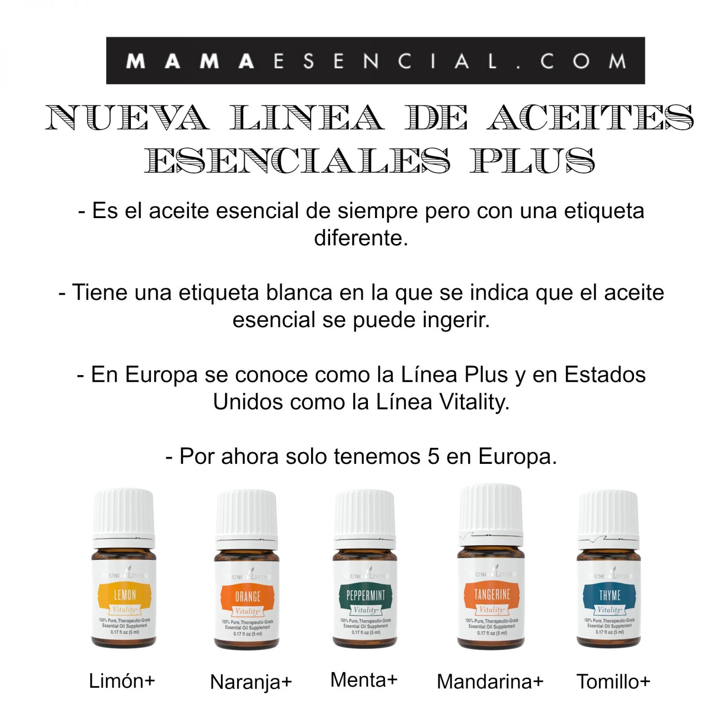 LINEA PLUS DE YOUNG LIVING