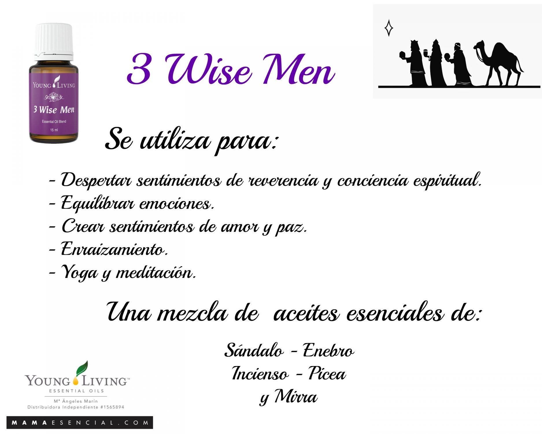 MEZCLA ACEITES ESENCIALES 3 WISE MEN