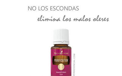 Aceites esenciales para eliminar malos olores