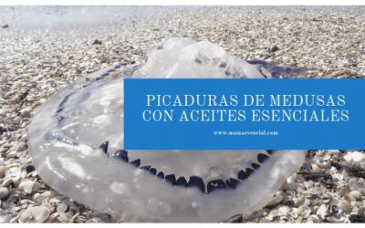10 aceites esenciales para las picaduras de medusas