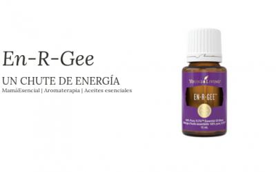 12 usos para En-R-Gee