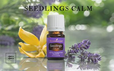 Seedlings Calm para niños