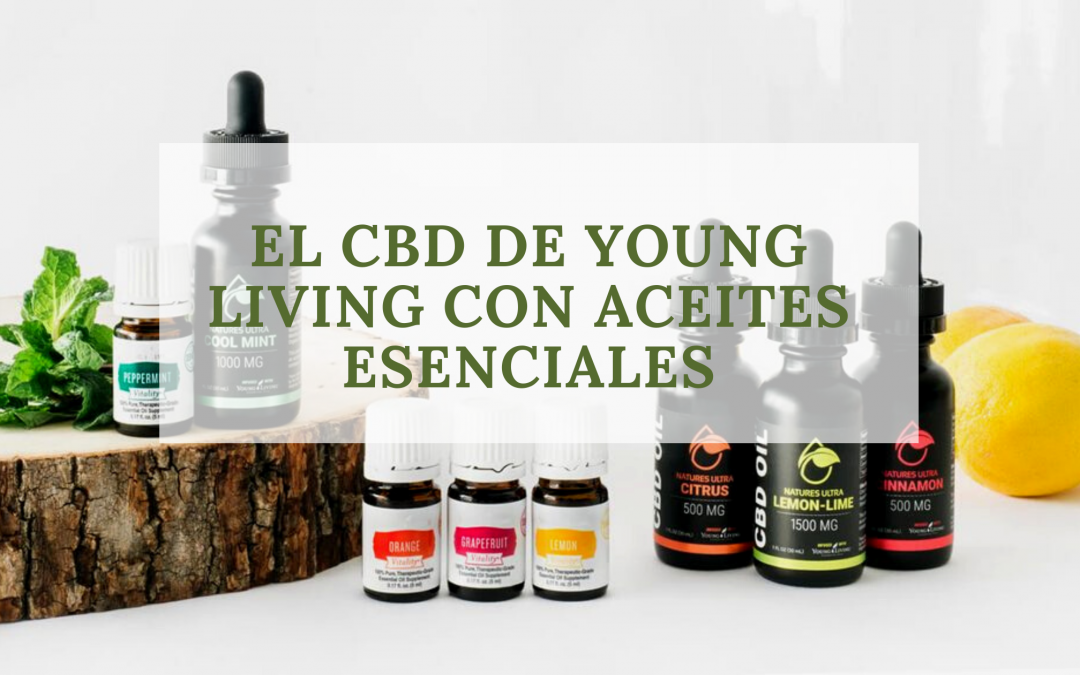 CBD CON ACEITES ESENCIALES YOUNG LIVING